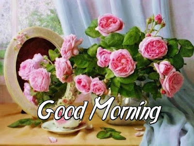 Good Morning Flower Image