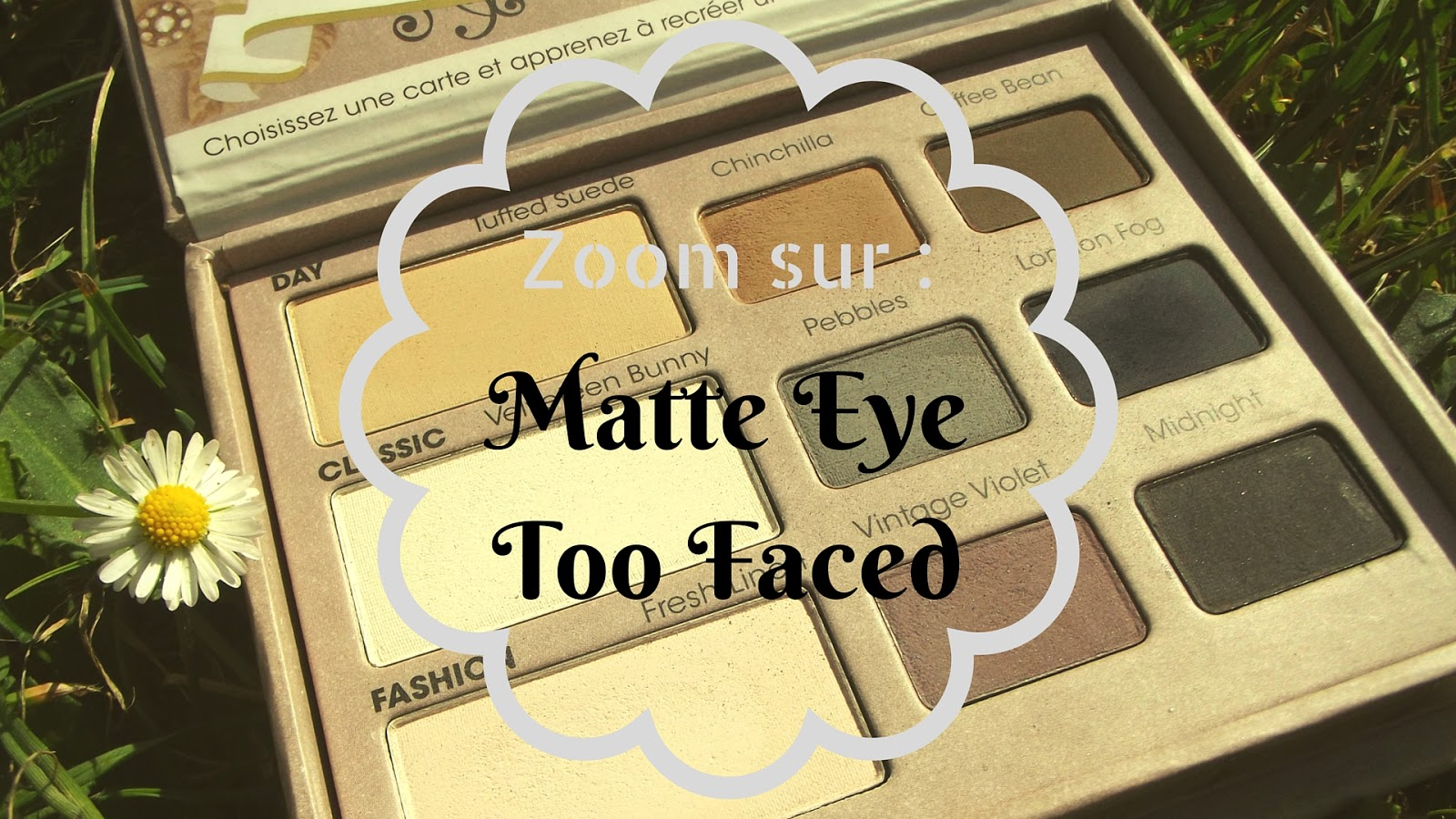 Revue sur la Matte Eye Too Faced