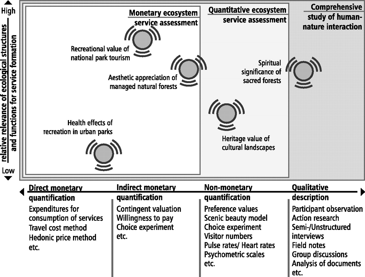 Collective Decision Making Under Uncertainty