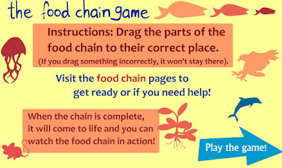 http://sheppardsoftware.com/content/animals/kidscorner/games/foodchaingame.htm