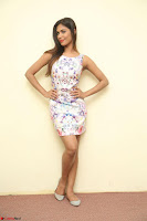 Nishi Ganda stunning cute in Flower Print short dress at Tick Tack Movie Press Meet March 2017 166.JPG
