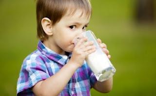 Pilih Hanya Tempat Jual Susu Anak Terbaik