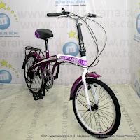 20 Inch Regazza Platinum 6 Speed Folding Bike