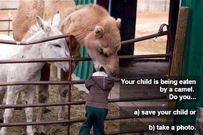 kid in zoo with head in camel do you take a photo or save child