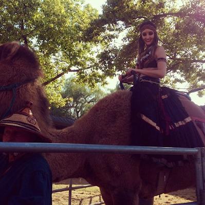 camel renaissance faire