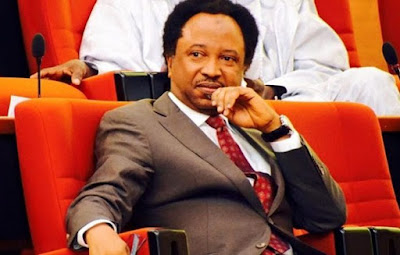 Senator Shehu Sani Reacts To Killing Of Over 80 In Plateau