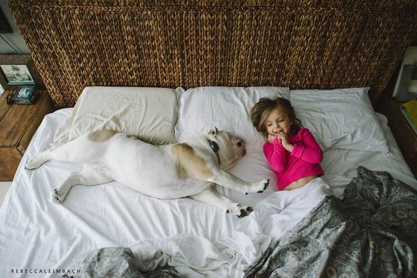 Cân nhắc khi cho cún ngủ với người