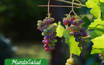 Beneficios de la uva para los riñones