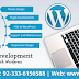 WordPress Web Design & Development Company
