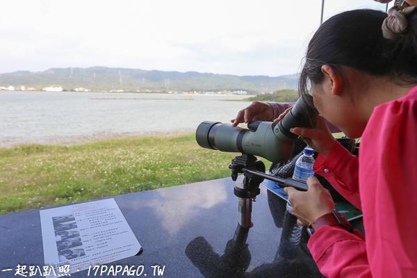 旁邊玻璃窗有高倍率的望遠鏡,觀賞野鳥的一舉一動或覓食秀