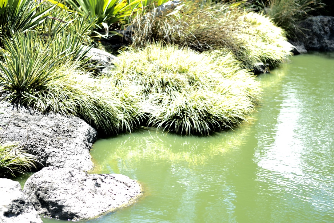 Rivers of Yarrambat