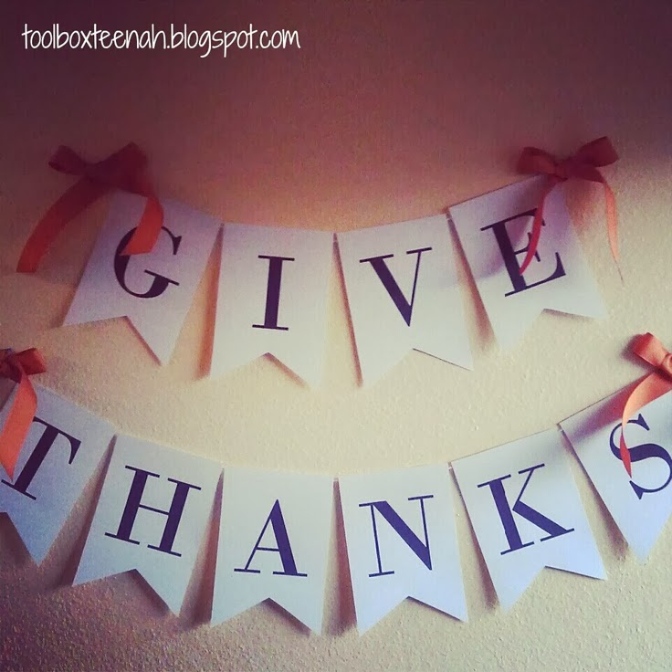 thanks giving and christmas photo collection, christmas, thanks giving