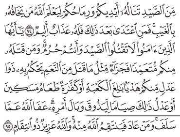 Tafsir Surat Al-Maidah Ayat 91, 92, 93, 94, 95