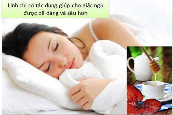công dụng của nấm linh chi với giấc ngủ