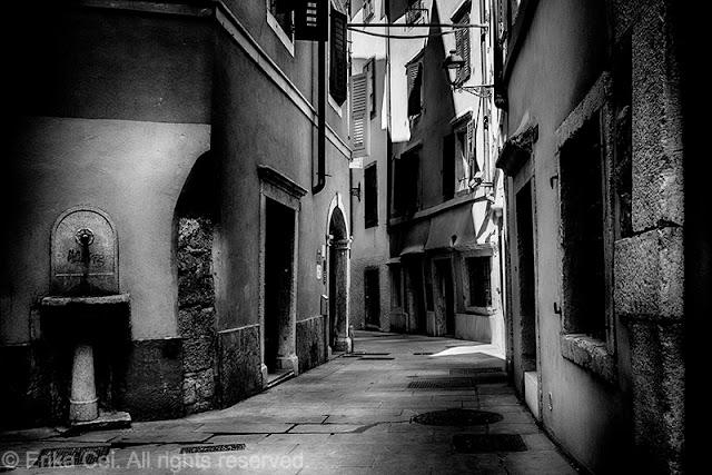 Cavana, Trieste