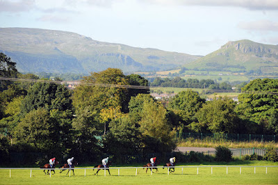 Irish Racecourses: Sligo