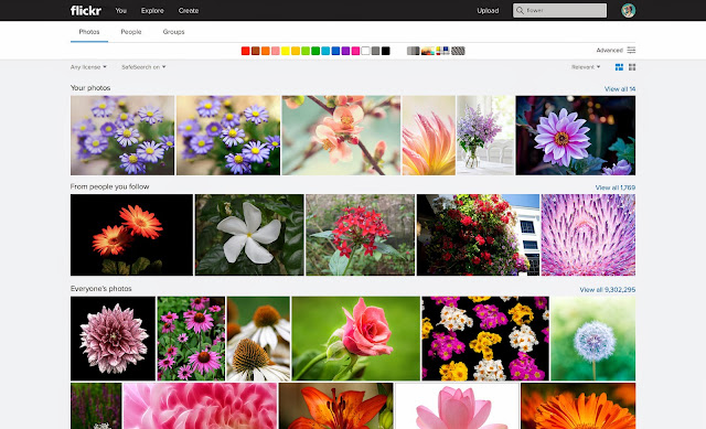 Flickr's new Unified Search Experience