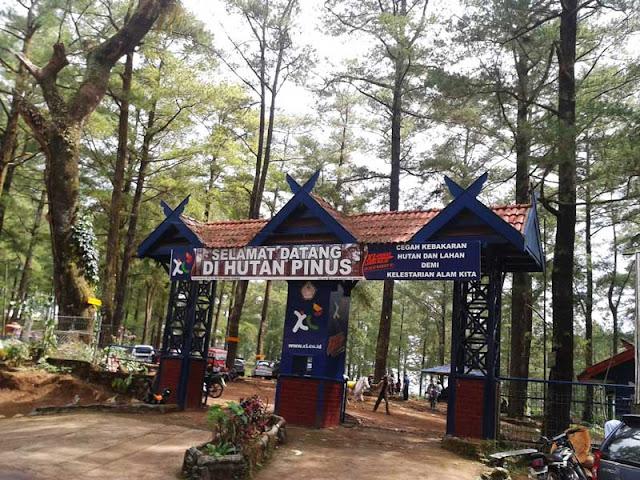 Hutan Malino - Green Valley Malino