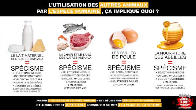 Exploitation des autres animaux - Spécisme - Lait - Fromage - Oeufs - Viande - Miel - Elevage - Abattoir