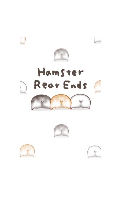 단순 햄스터 뒷모습