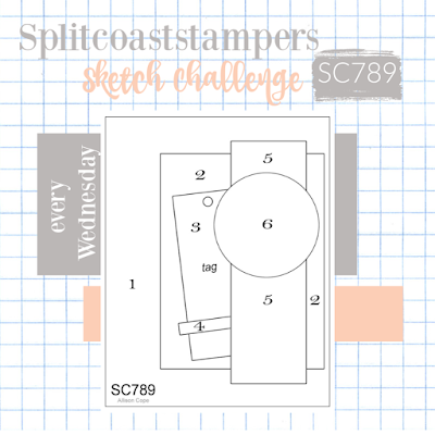 Splitcoaststampers Card Sketch Challenge SC789