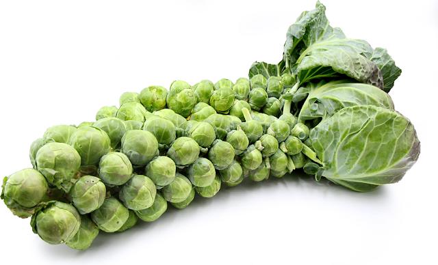 7 loại thức ăn chống lão hóa da cho làn da luôn tươi trẻ