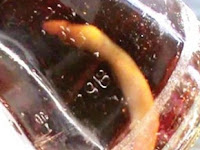 Bikin Mual... Pria Ini Minum Soda 'Rasa' Bangkai Ular