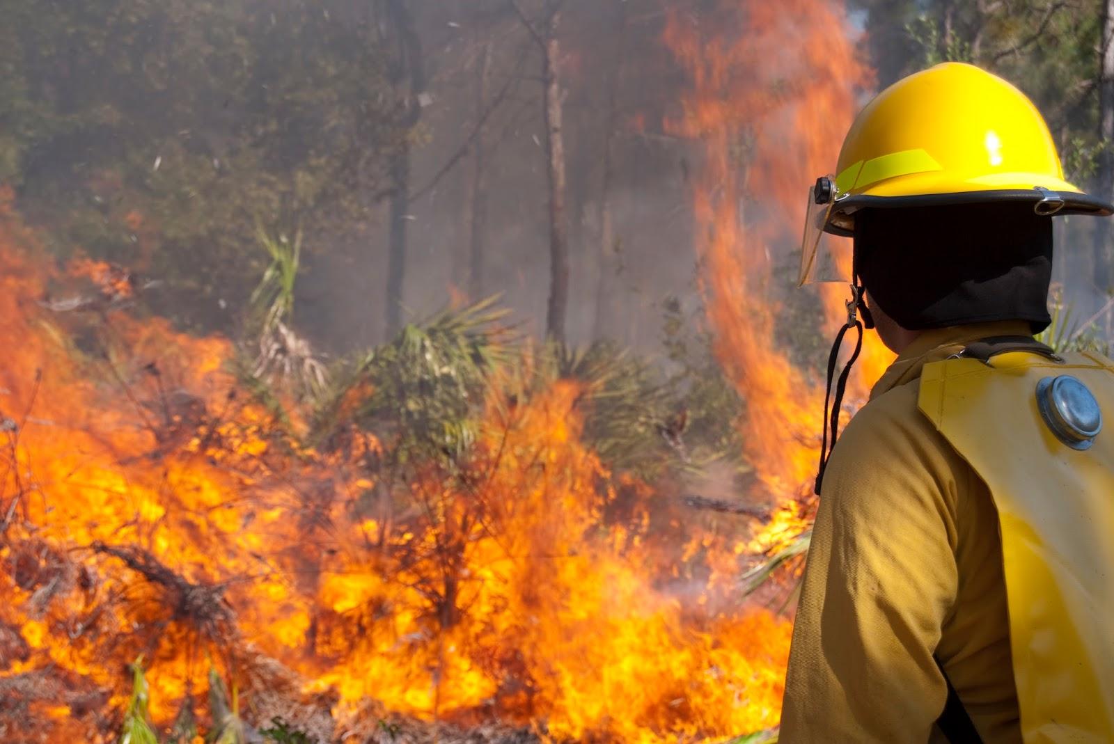 NFPA 1143-2014 Wildland fire
