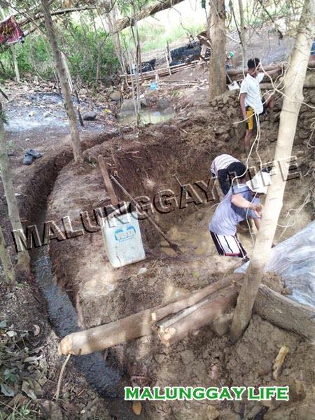 malunggay-life-moringa-farm