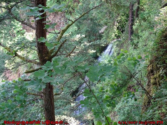 Coopey Falls Oregon