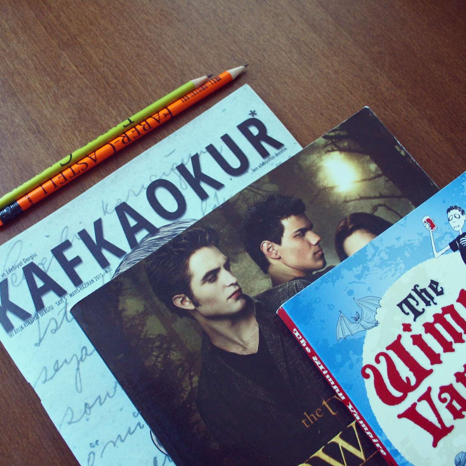 Vampire Saga Twilight: sırayla kitaplar 75