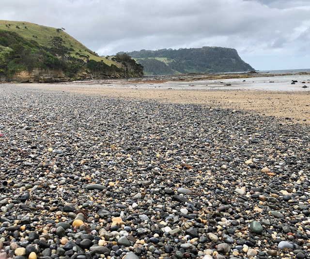 Fossil Bluff Tasmania