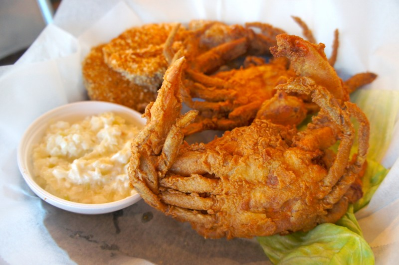 Red Lobster Recipe Fried Soft Shell Crab Florida Blue Crab