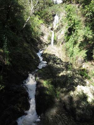 Pequeña cascada en el centro de Whakatane, Nueva Zelanda
