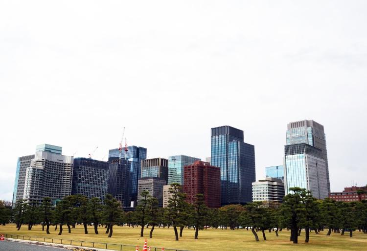Tokyo, Japan, city skyline, Euriental