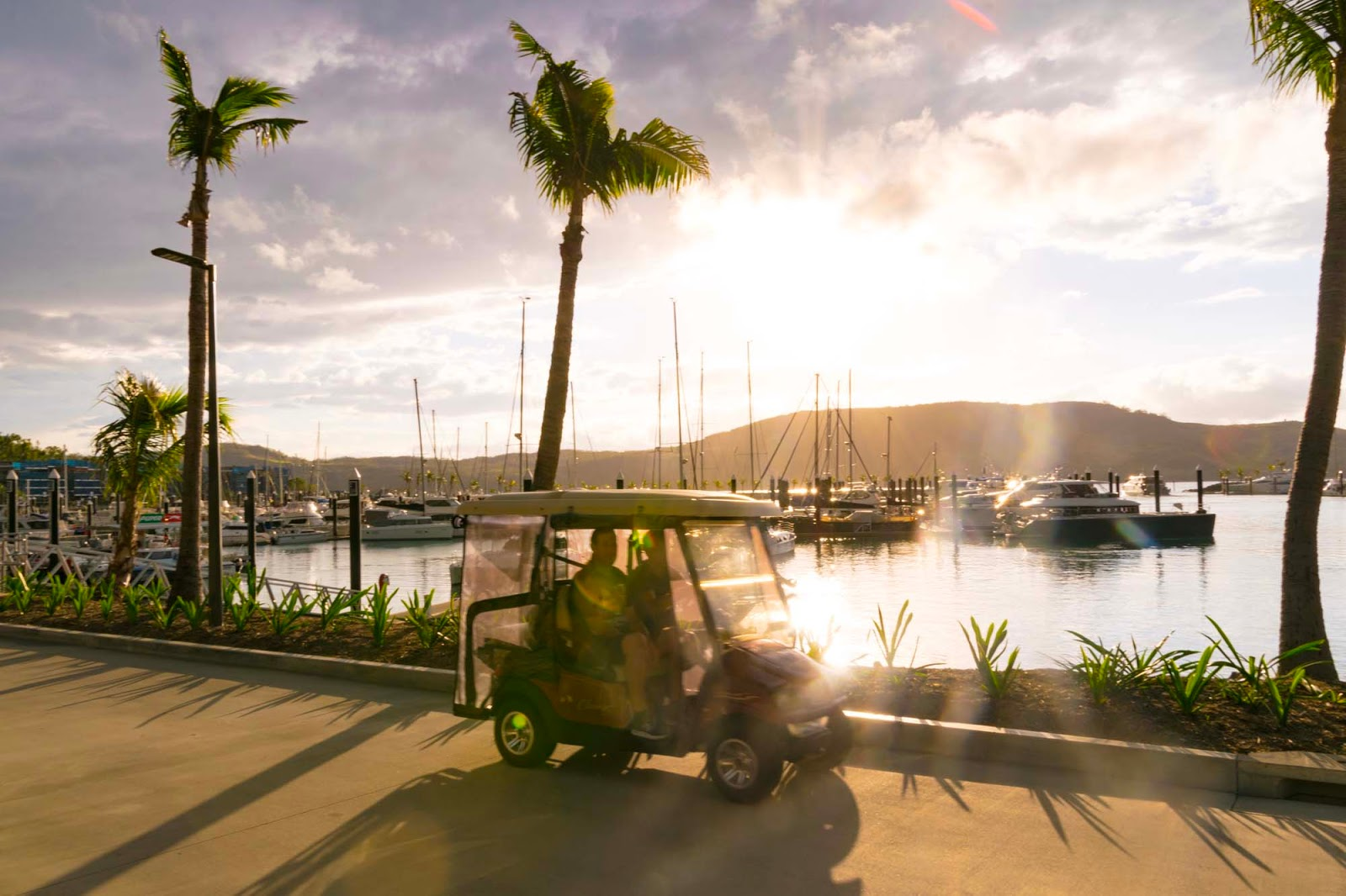 sunset on hamilton island