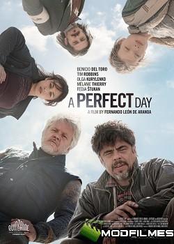 Capa do Filme Um Dia Perfeito