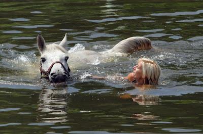 Ark For Animals Aqua Animals