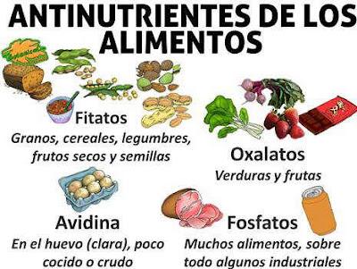 Sustancias no nutritivas, Antinutrientes, No Nutrientes,