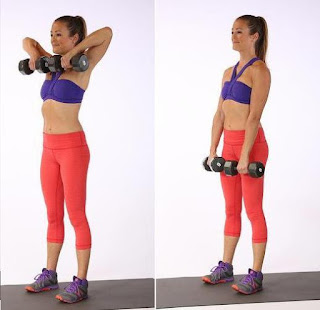 Biceps Barbell Position Practice Individual Exercises