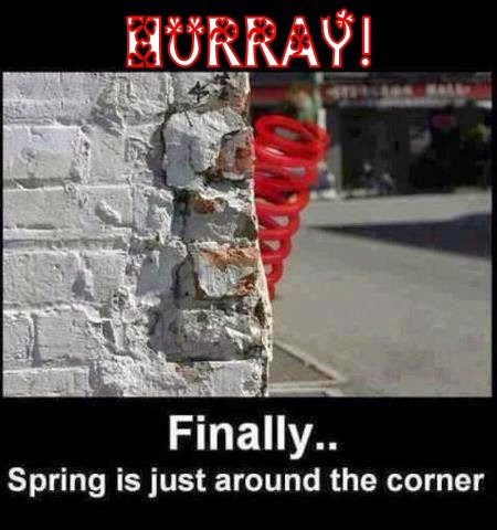 spring peeking around the corner - funny photo