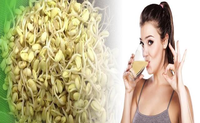 Công dụng của đậu nành, mầm đậu nành