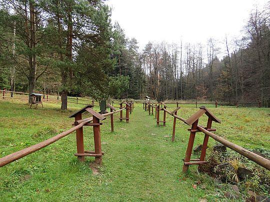 Łąka otaczająca Ośrodek Edukacji Ekologicznej na Polichtach.