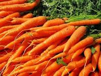 Gunakan Waring Sayur Untuk Proses Pengepakan Wortel, Dijamin Kualitas Wortel Terjaga