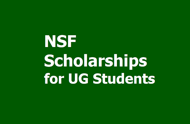 NSF North South Foundation Scholarships: NSF College Merit Scholarships for UG Students 2019