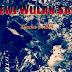 Dewi Wulan Sari - 3