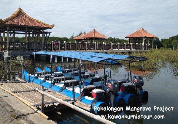 pekalongna mangrove project
