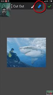 Cara Edit Foto ikan paus di atas langit Menggunakan PicSayPro