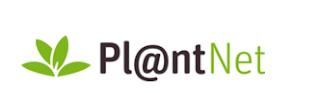 אפליקציית plantnet