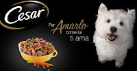 Logo Diventa una delle 1.500 tester Cesar per il tuo amico cane